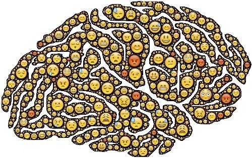 Een nieuw brein alstublieft